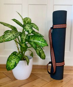 Marjariasana Attached Yoga Strap
